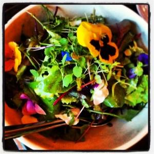 bioutifoul salade